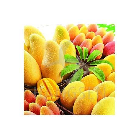E-liquide Hangsen Mangue
