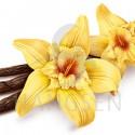E-liquid Hangsen Vanilla
